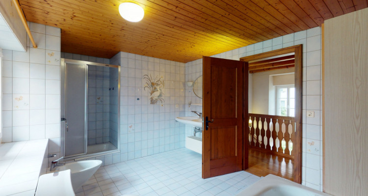 Belle maison historique bien entretenue au centre de Villarvollard image 7
