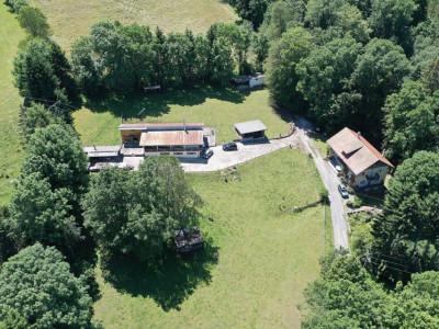 Eteaux: Maison 2 logements + écurie sur env 11000m2 de terrain     image 1