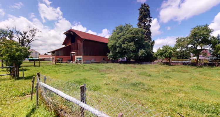 Grande ferme et 1734 m2 de terrain, pour investisseurs ou chevaux! image 1
