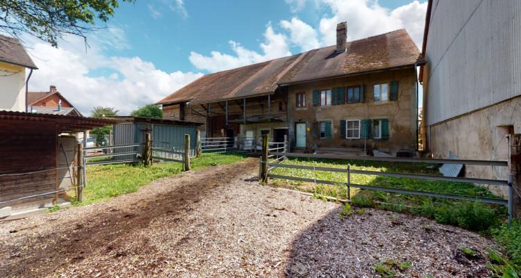 Grande ferme et 1734 m2 de terrain, pour investisseurs ou chevaux! image 3