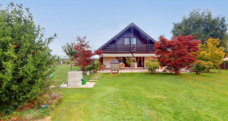 Villa individuelle avec magnifiques terrasses et jardin. image 5