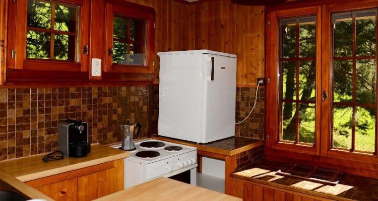 Gryon Immo vous propose un joli chalet de 2 appartements dans une nature magnifique image 9