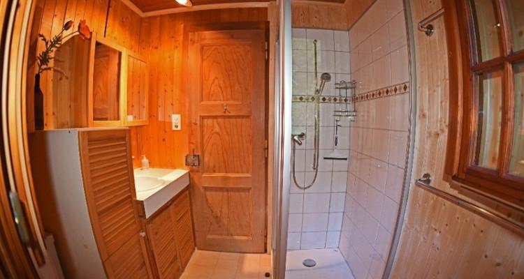 Gryon Immo vous propose un joli chalet de 2 appartements dans une nature magnifique image 12