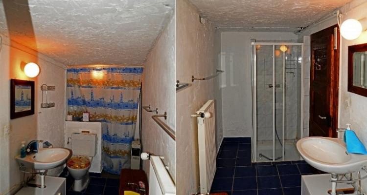 Gryon Immo vous propose un joli chalet de 2 appartements dans une nature magnifique image 16