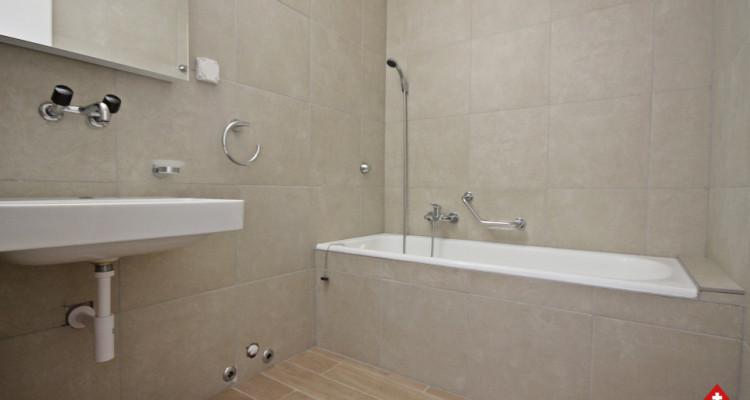 Bel appartement refait à neuf / 3.5 pièces / 2 chambres  image 9