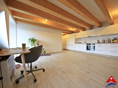 Magnifique 2,5p // 1 chambre // 1 SDB // Une grande terrasse image 1