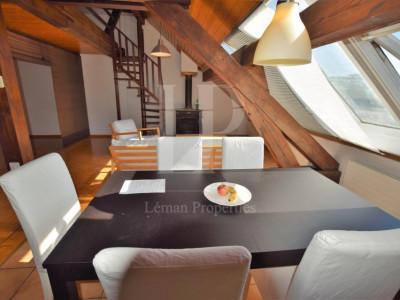 Spacieux loft de 100 m2 Quartier Plainpalais - Place des Augustins image 1