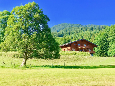Villars-sur-Ollon magnifique chalet de 7 pces avec un loft, état neuf  image 1