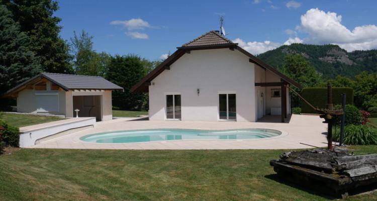 France voisine, belle villa darchitecte  avec vue Alpes image 3