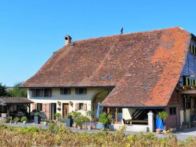 Ferme équestre, située dans un cadre bucolique du Gros de Vaud image 1