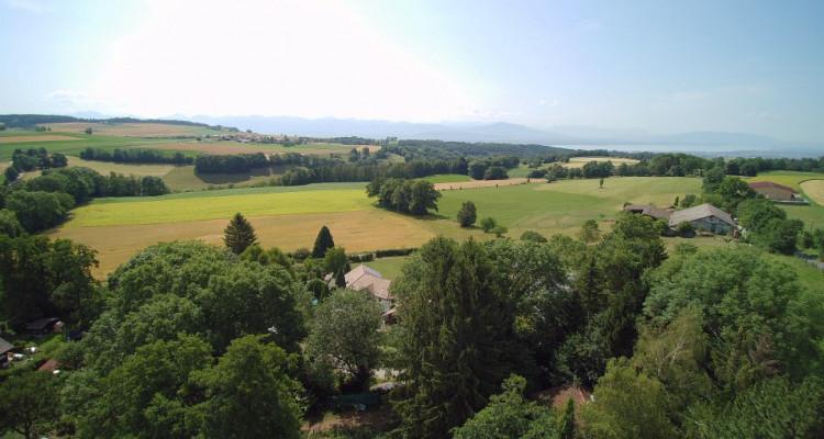 Grande maison pour une grande famille - Villa D neuve sur splendide terrain verdoyant  image 3