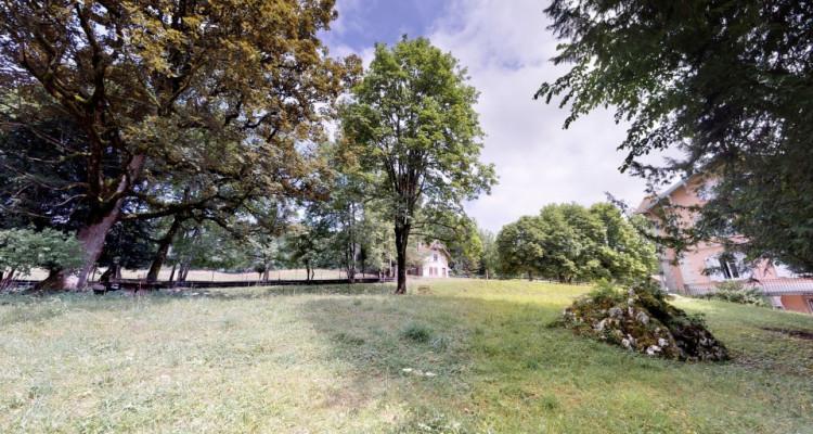 Unique - Maison de maître située sur un terrain arborisé et clos image 6