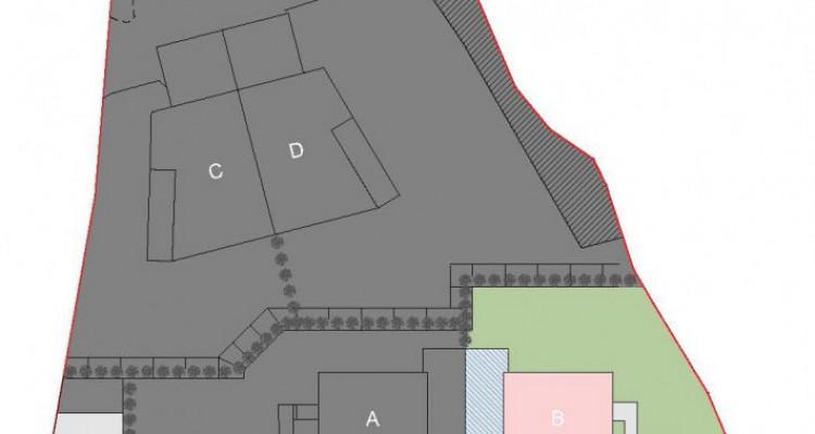 La Clairière des bois - Villa B semi-individuelle  image 8