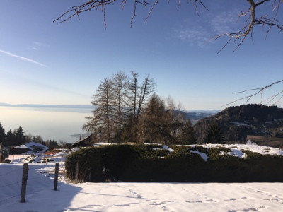 Caux sur Montreux - Terrain avec projet - libre de mandat image 1