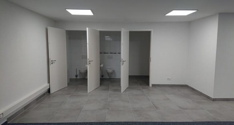 Bureau 166 m2 dans halle multifonction image 2
