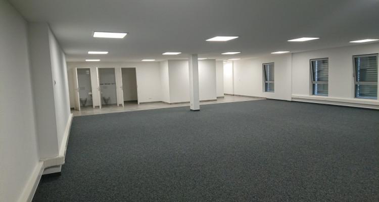 Bureau 166 m2 dans halle multifonction image 3