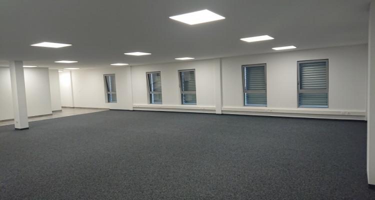 Bureau 166 m2 dans halle multifonction image 4