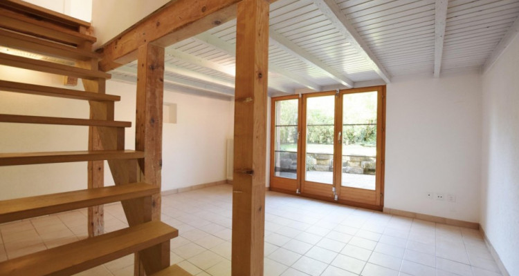 Maison individuelle au Petit Lancy image 12