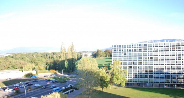 Appartement traversant de 4,5 pièces avec balcon et vue sur les Alpes image 12