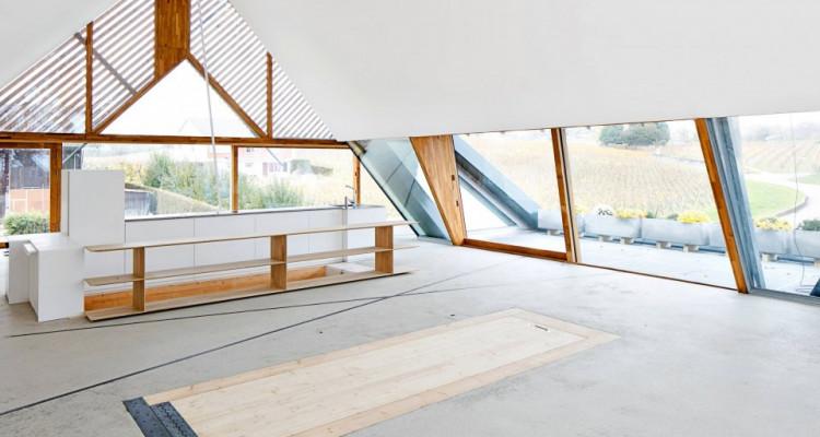 Magnifique villa architecte 4,5 p / 3 chambres / 2 SDB / jardin image 1