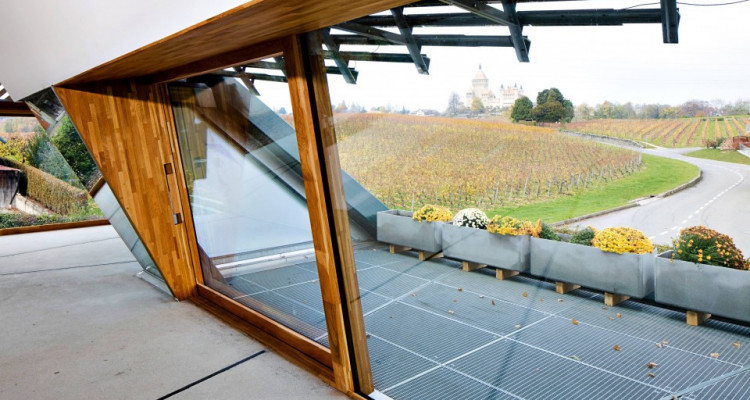 Magnifique villa architecte 4,5 p / 3 chambres / 2 SDB / jardin image 6