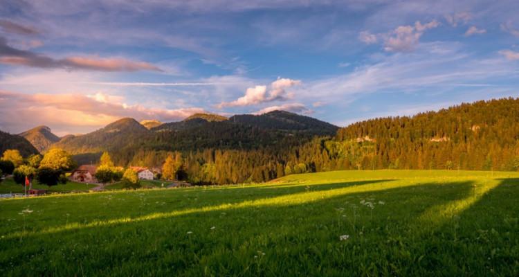 Unique et rare pour la région, nature et vue panoramique. !!! A 25 min dYverdon image 1