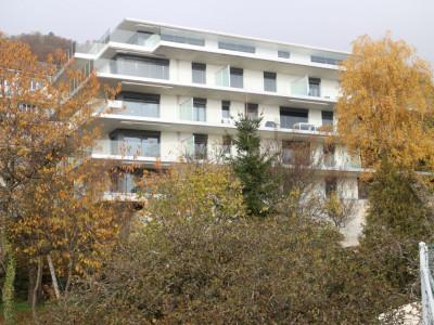 NEUF - Grande terrasse image 1
