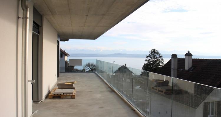 NEUF - Magnifique vue lac et alpes image 1
