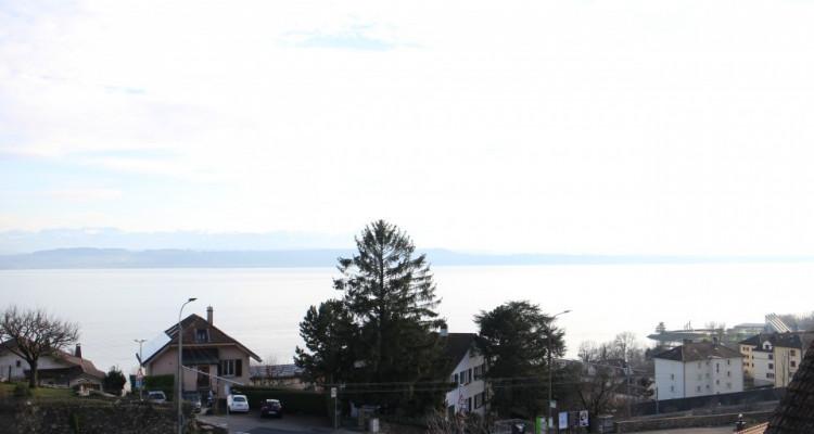 NEUF - Magnifique vue lac et alpes image 2