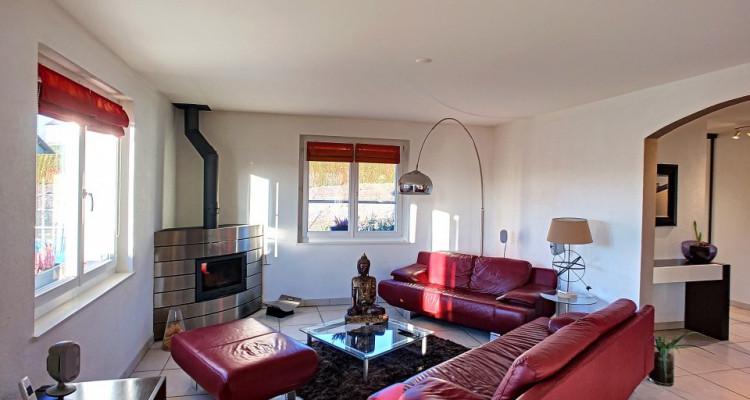 Villa parfaitement entretenue et son grand studio 2 pièces à vendre!  image 7