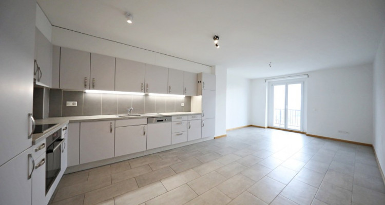 Magnifique appartement de 4,5 pièces / 3 CHB / 2 SDB / Vue image 1