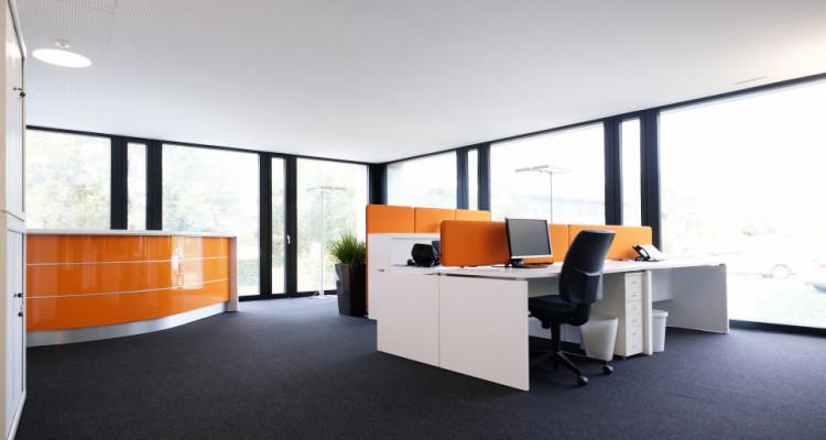 Magnifiques bureaux Minergie - Coworking // St-Sulpice - 300m² image 2