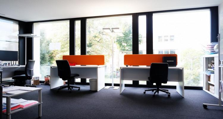 Magnifiques bureaux Minergie - Coworking // St-Sulpice - 300m² image 3