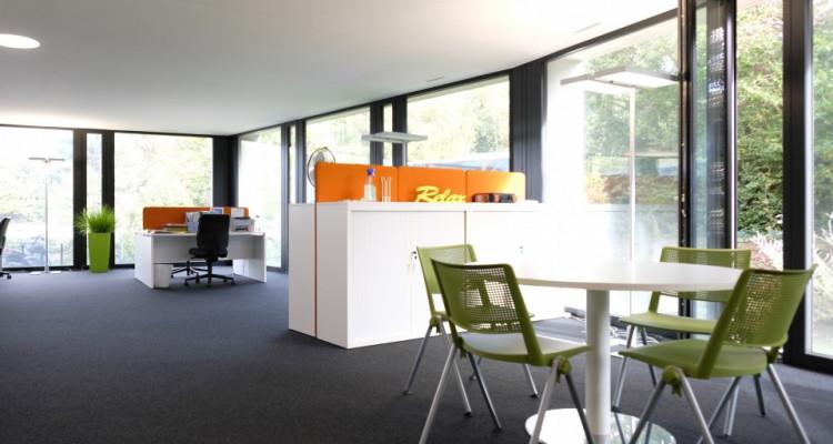 Magnifiques bureaux Minergie - Coworking // St-Sulpice - 300m² image 6