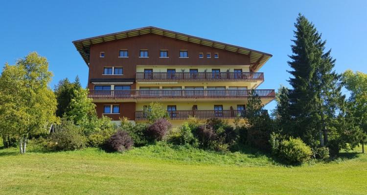 Bel HOTEL RESTAURANT mythique de montagne, Station des ROUSSES image 1