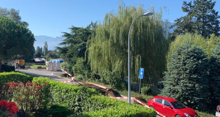 Duplex 5.5p dexception avec son jardin privatif image 7