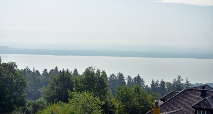 Bel appartement avec magnifique terrasse de 81 m2 avec vue sur le lac image 1
