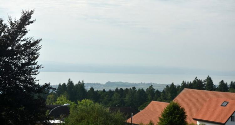Bel appartement avec magnifique terrasse de 81 m2 avec vue sur le lac image 2