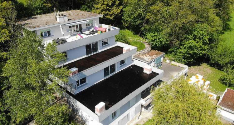 Bel appartement avec magnifique terrasse de 81 m2 avec vue sur le lac image 6