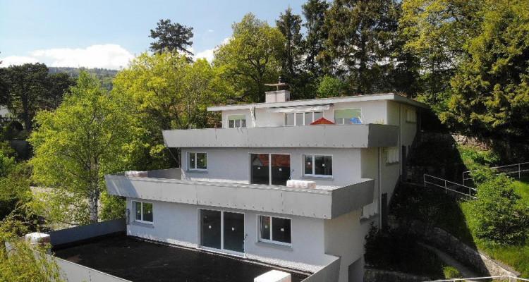 Bel appartement avec magnifique terrasse de 81 m2 avec vue sur le lac image 9