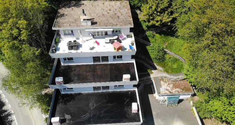Bel appartement avec magnifique terrasse de 81 m2 avec vue sur le lac image 11