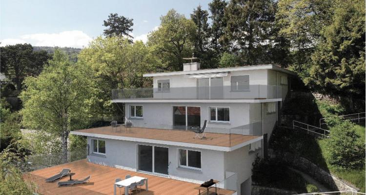 Bel appartement avec magnifique terrasse de 81 m2 avec vue sur le lac image 12