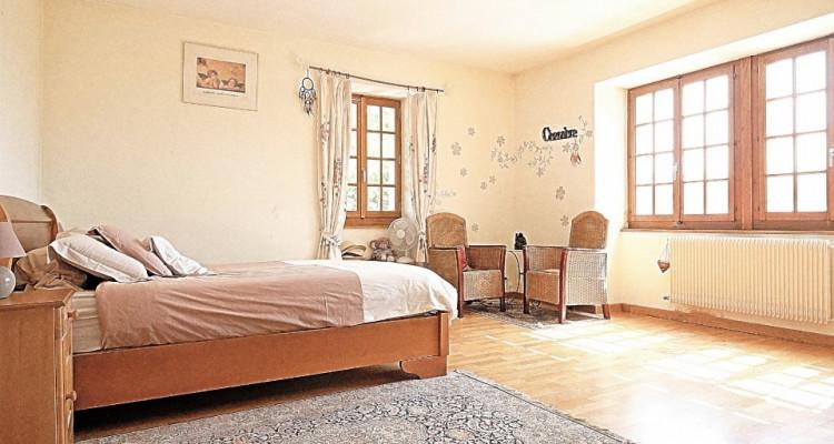 20min de GENEVE- VALLEIRY /Magnifique maison de maître/ Jardin-piscine image 7