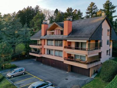 Appartement dans une résidence vue dégagée sur le lac image 1