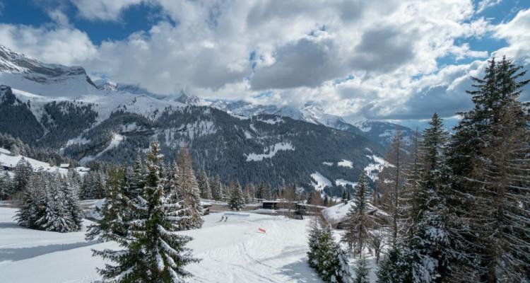 Gryon Immo vous propose un jolie 2 pièces en duplex sur la piste de ski image 8