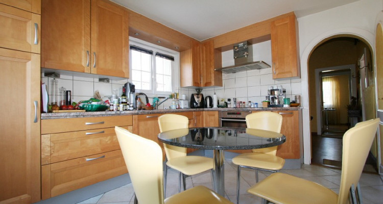 villa + appartement indépendant, dans son écrin de verdure avec calme, soleil et vue. image 4