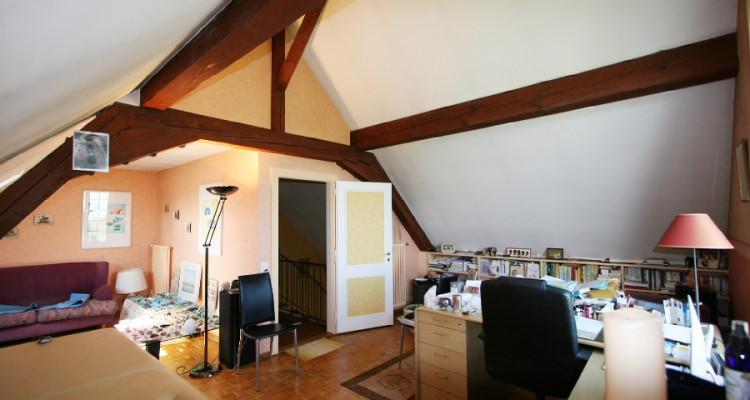 villa + appartement indépendant, dans son écrin de verdure avec calme, soleil et vue. image 9