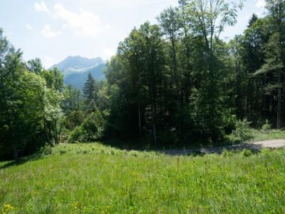 Gryon Immo vous propose un joli terrain dans un quartier résidentiel proche des commodités PRIX: 300.--/m2 CHF image 1