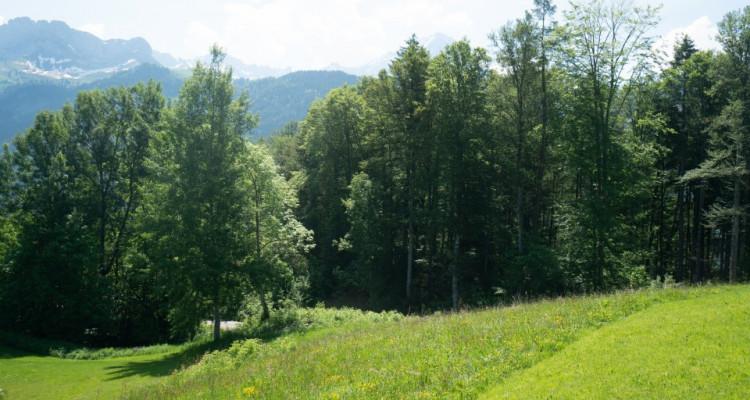 Gryon Immo vous propose un joli terrain dans un quartier résidentiel proche des commodités PRIX: 300.--/m2 CHF image 2