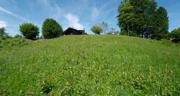 Gryon Immo vous propose un joli terrain dans un quartier résidentiel proche des commodités PRIX: 300.--/m2 CHF image 3